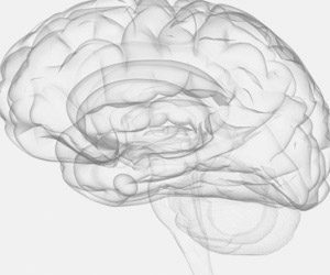 Neurochirurgia a Padova