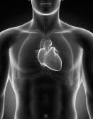 Cardiologia a Padova
